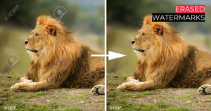 visible watermarks can be easily erased